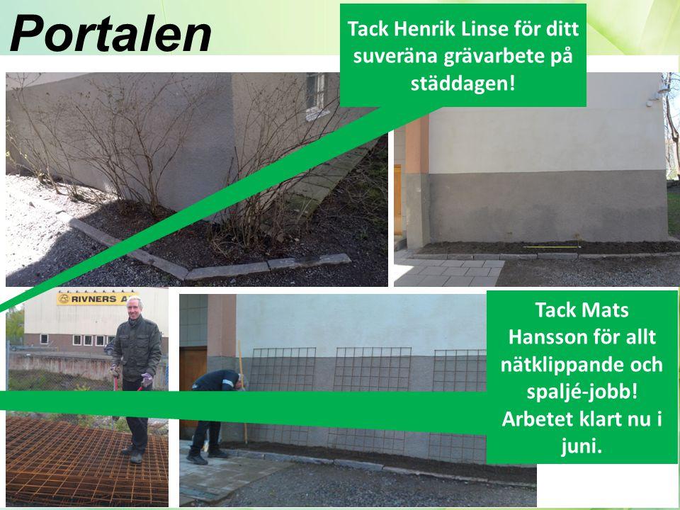 Portalen Tack Mats Hansson för allt nätklippande och spaljé-jobb.