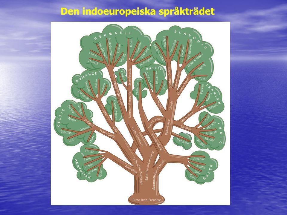 Den indoeuropeiska språkträdet