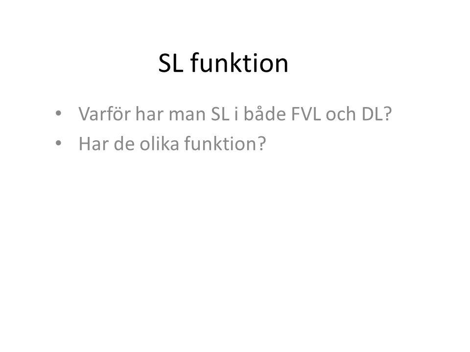 SL funktion Varför har man SL i både FVL och DL? Har de olika funktion?