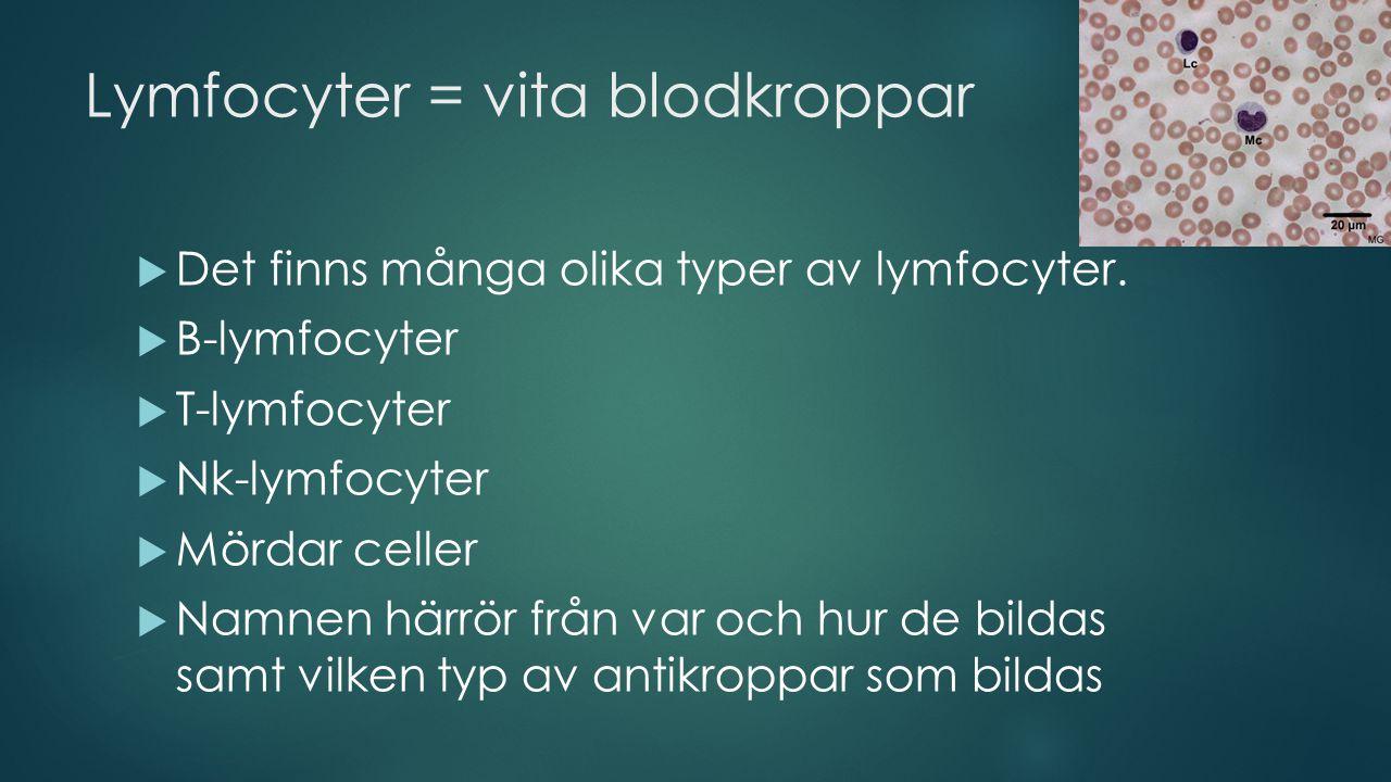 Blodgrupper  Det finns olika blodgrupper  De innehåller olika typer av antigener.