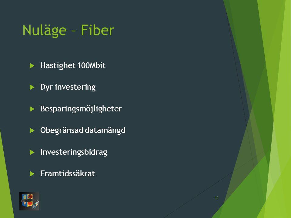 Nuläge – Fiber  Hastighet 100Mbit  Dyr investering  Besparingsmöjligheter  Obegränsad datamängd  Investeringsbidrag  Framtidssäkrat 13