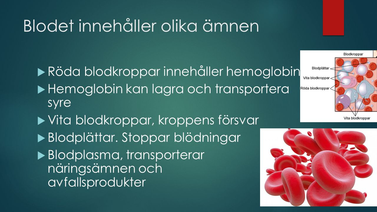 Blodet innehåller olika ämnen  Röda blodkroppar innehåller hemoglobin  Hemoglobin kan lagra och transportera syre  Vita blodkroppar, kroppens försvar  Blodplättar.