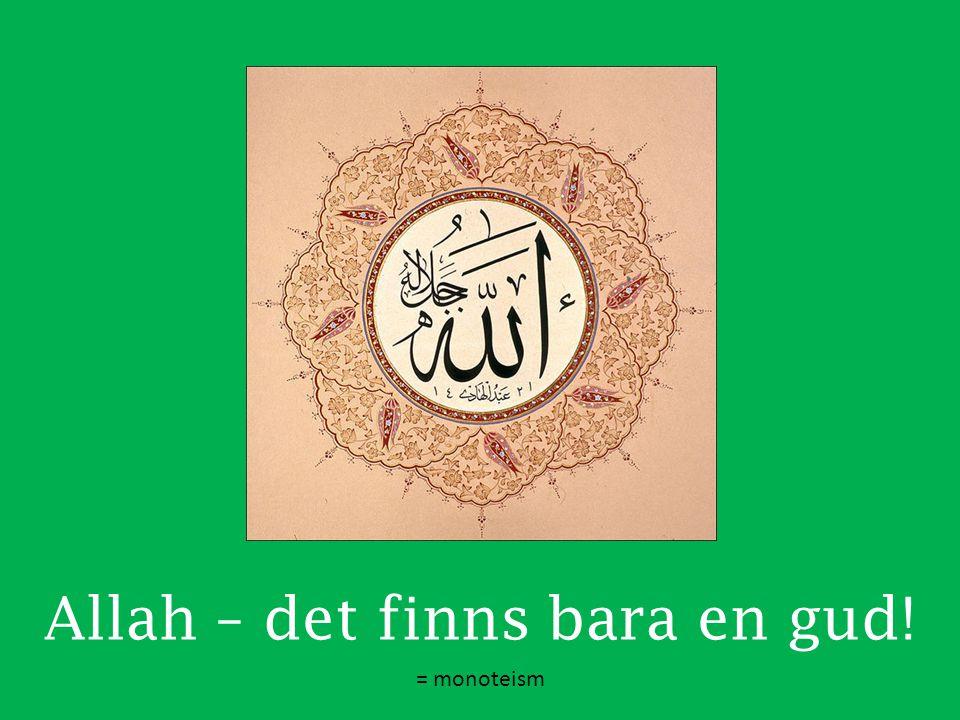 Allah – det finns bara en gud! = monoteism