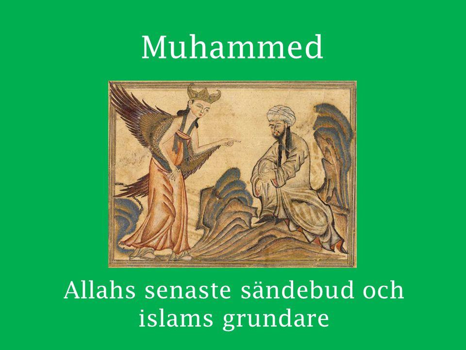 Sunni och shia De har framförallt olika åsikter om vem som ska leda muslimerna och tolka Koranen Shia anser att bara släktingar till Mohammed ska leda muslimerna (imam).