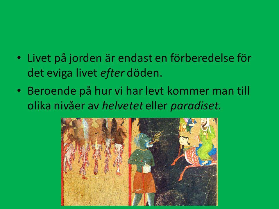 Livet på jorden är endast en förberedelse för det eviga livet efter döden. Beroende på hur vi har levt kommer man till olika nivåer av helvetet eller