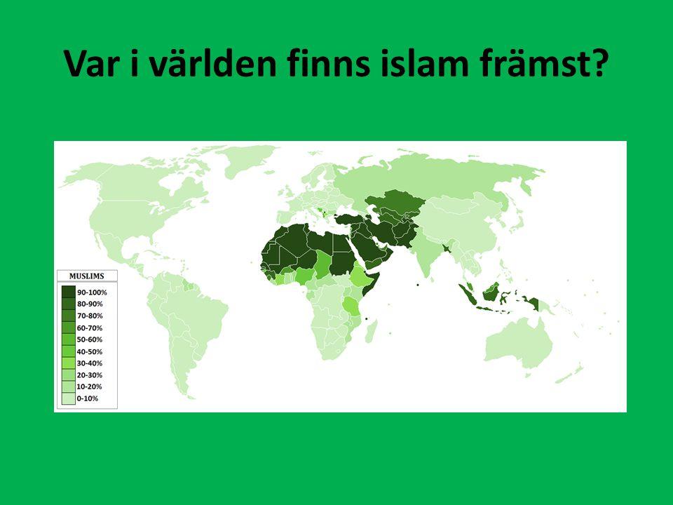 SunniShia Heliga platserMekka är viktigasthar samma, men har fler än sunni Bildförbudogillar avbildande av människor bilder på imamerna Ali och Hussein mycket populära.