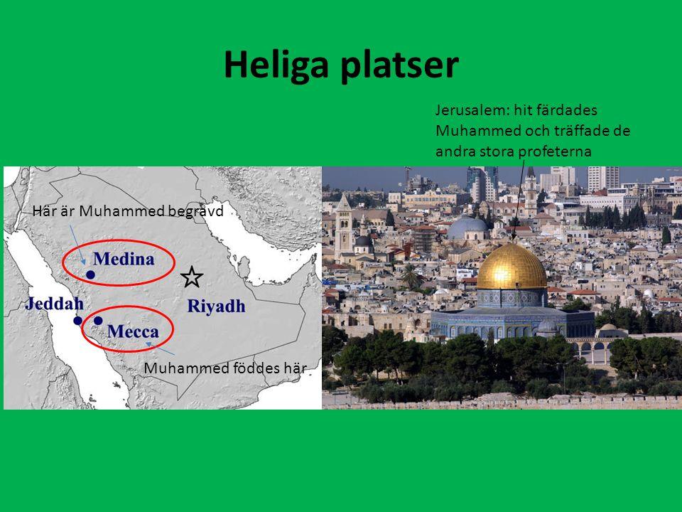 Heliga platser Muhammed föddes här Här är Muhammed begravd Jerusalem: hit färdades Muhammed och träffade de andra stora profeterna