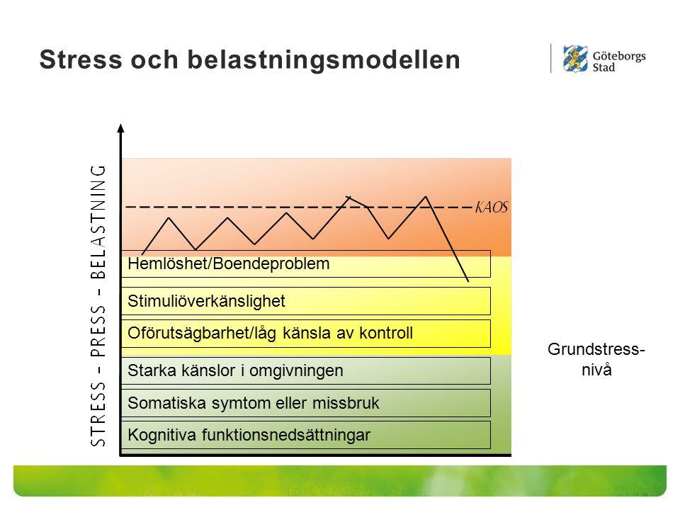 Stress och belastningsmodellen Kognitiva funktionsnedsättningar Somatiska symtom eller missbruk Starka känslor i omgivningen Oförutsägbarhet/låg känsl