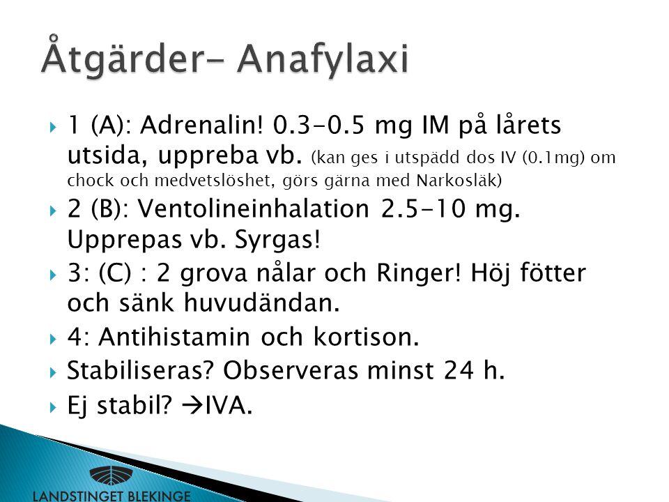  1 (A): Adrenalin! 0.3-0.5 mg IM på lårets utsida, uppreba vb. (kan ges i utspädd dos IV (0.1mg) om chock och medvetslöshet, görs gärna med Narkosläk