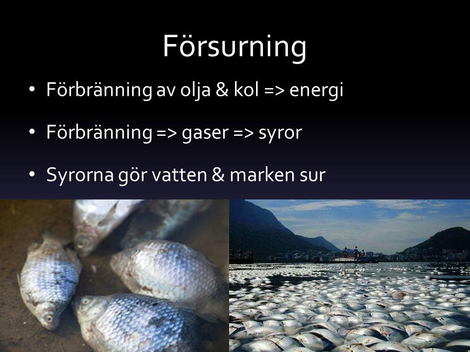 Försurning Förbränning av olja & kol => energi Förbränning => gaser => syror Syrorna gör vatten & marken sur