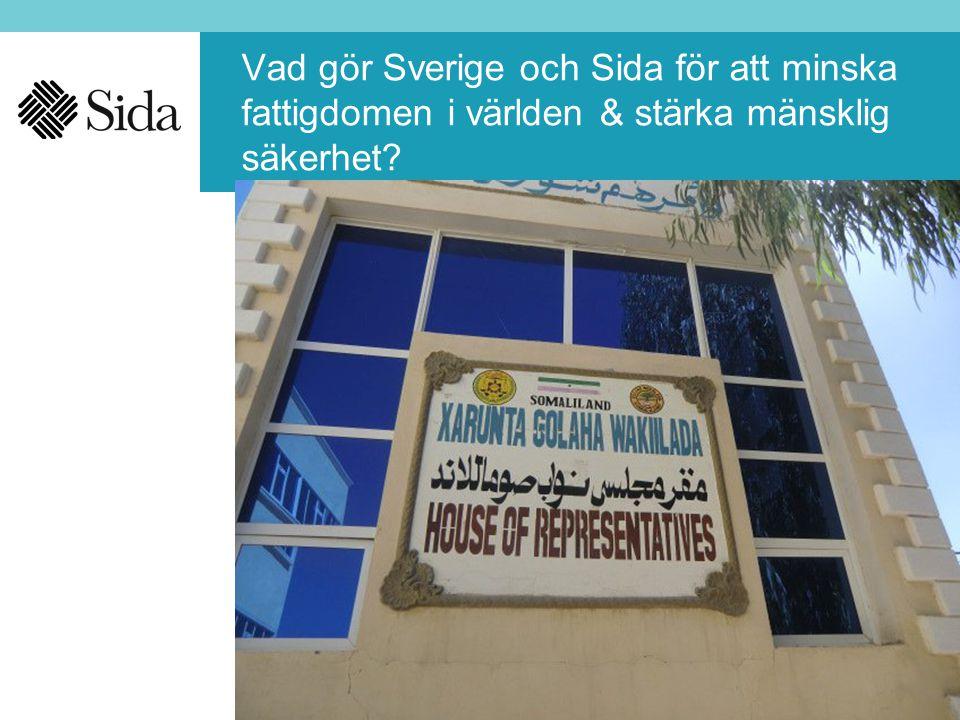 Vad gör Sverige och Sida för att minska fattigdomen i världen & stärka mänsklig säkerhet?