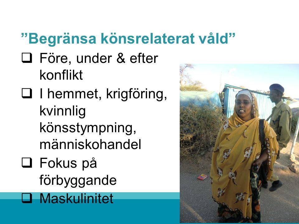 Begränsa könsrelaterat våld  Före, under & efter konflikt  I hemmet, krigföring, kvinnlig könsstympning, människohandel  Fokus på förbyggande  Maskulinitet