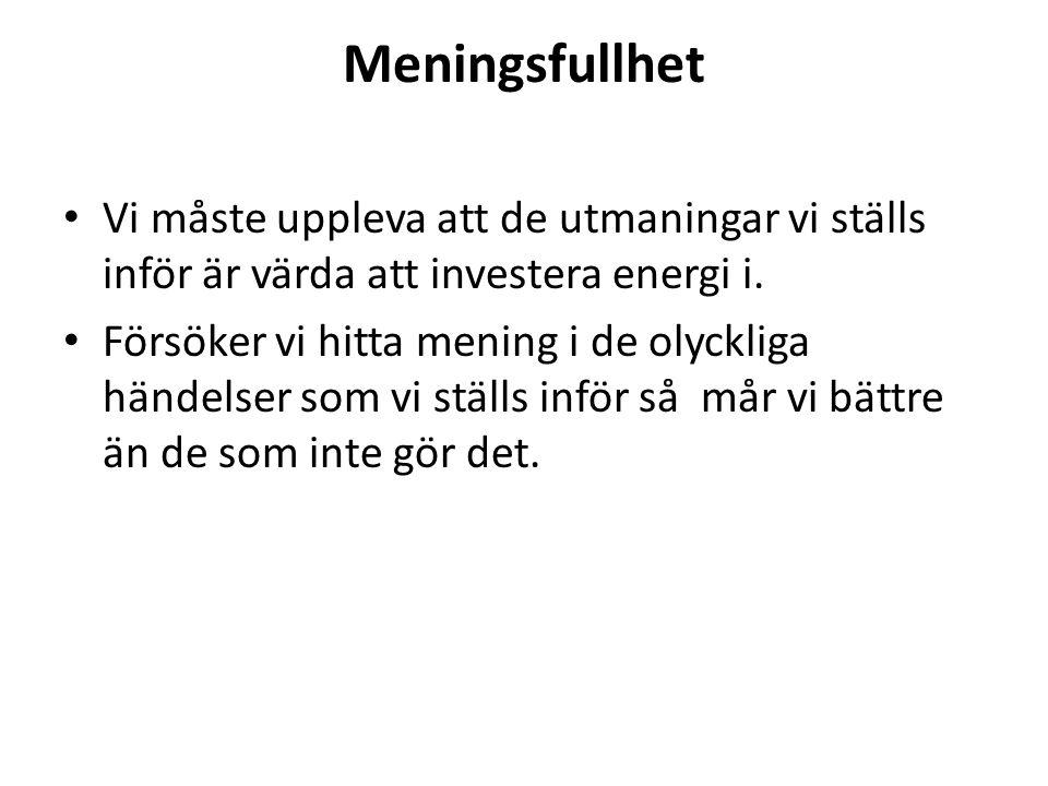 Meningsfullhet Vi måste uppleva att de utmaningar vi ställs inför är värda att investera energi i. Försöker vi hitta mening i de olyckliga händelser s