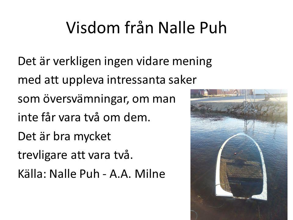 Visdom från Nalle Puh Det är verkligen ingen vidare mening med att uppleva intressanta saker som översvämningar, om man inte får vara två om dem. Det