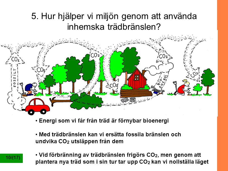 10/(17) 5. Hur hjälper vi miljön genom att använda inhemska trädbränslen? Energi som vi får från träd är förnybar bioenergi Med trädbränslen kan vi er