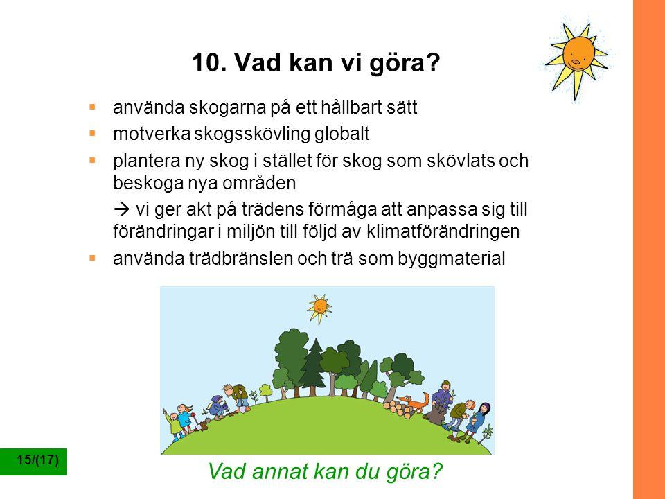 15/(17) 10. Vad kan vi göra?  använda skogarna på ett hållbart sätt  motverka skogsskövling globalt  plantera ny skog i stället för skog som skövla
