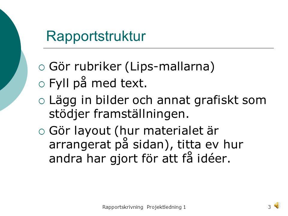 Rapportskrivning Projektledning 13 Rapportstruktur  Gör rubriker (Lips-mallarna)  Fyll på med text.
