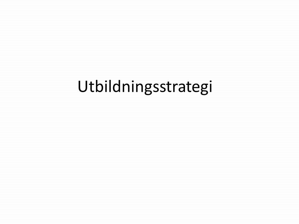Utbildningstrategi