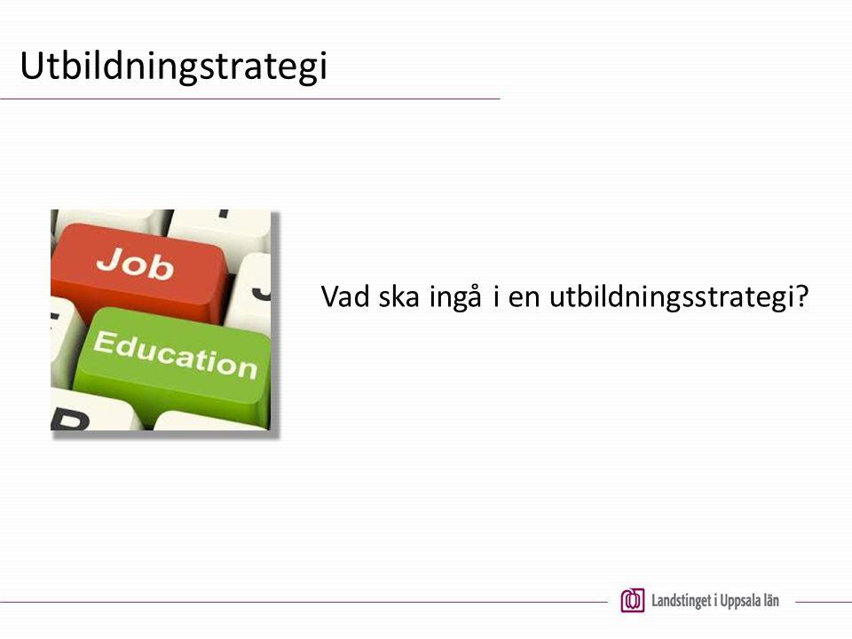 Vad ska ingå i en utbildningsstrategi?