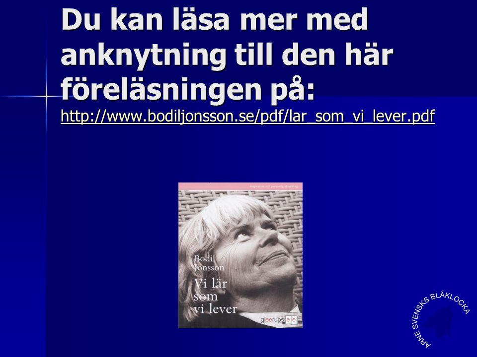Du kan läsa mer med anknytning till den här föreläsningen på: http://www.bodiljonsson.se/pdf/lar_som_vi_lever.pdf
