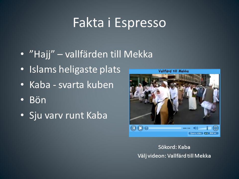 """Fakta i Espresso Sökord: Kaba Välj videon: Vallfärd till Mekka """"Hajj"""" – vallfärden till Mekka Islams heligaste plats Kaba - svarta kuben Bön Sju varv"""