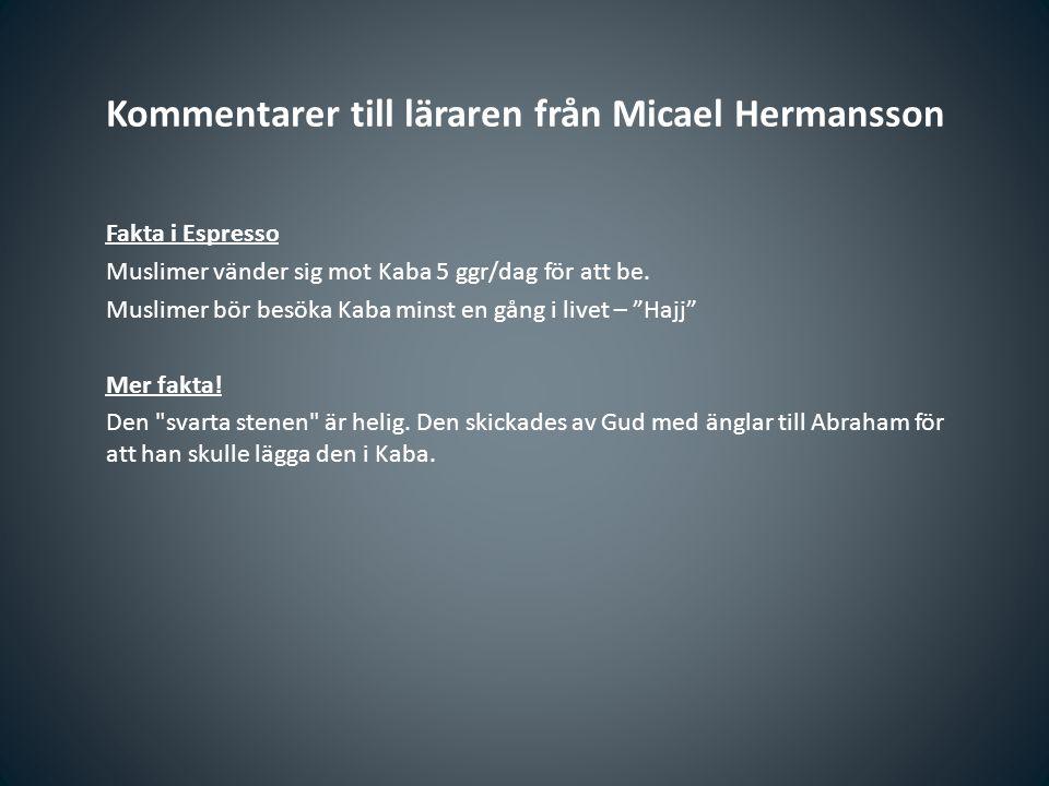 Kommentarer till läraren från Micael Hermansson Fakta i Espresso Muslimer vänder sig mot Kaba 5 ggr/dag för att be. Muslimer bör besöka Kaba minst en