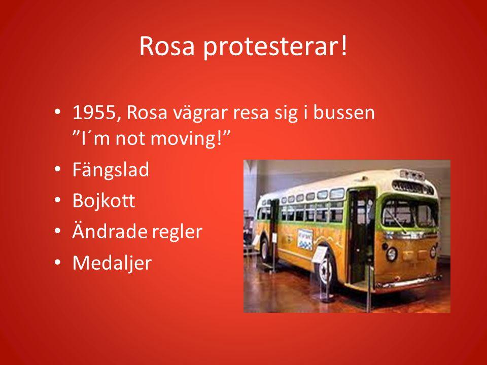 Rosa protesterar.