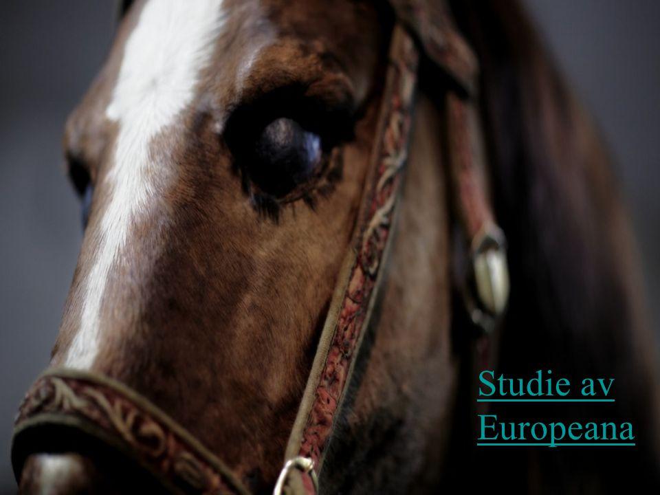 Studie av Europeana