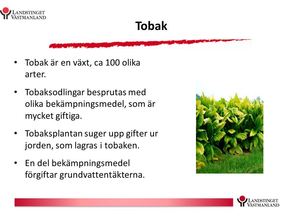Tobak Tobak är en växt, ca 100 olika arter. Tobaksodlingar besprutas med olika bekämpningsmedel, som är mycket giftiga. Tobaksplantan suger upp gifter