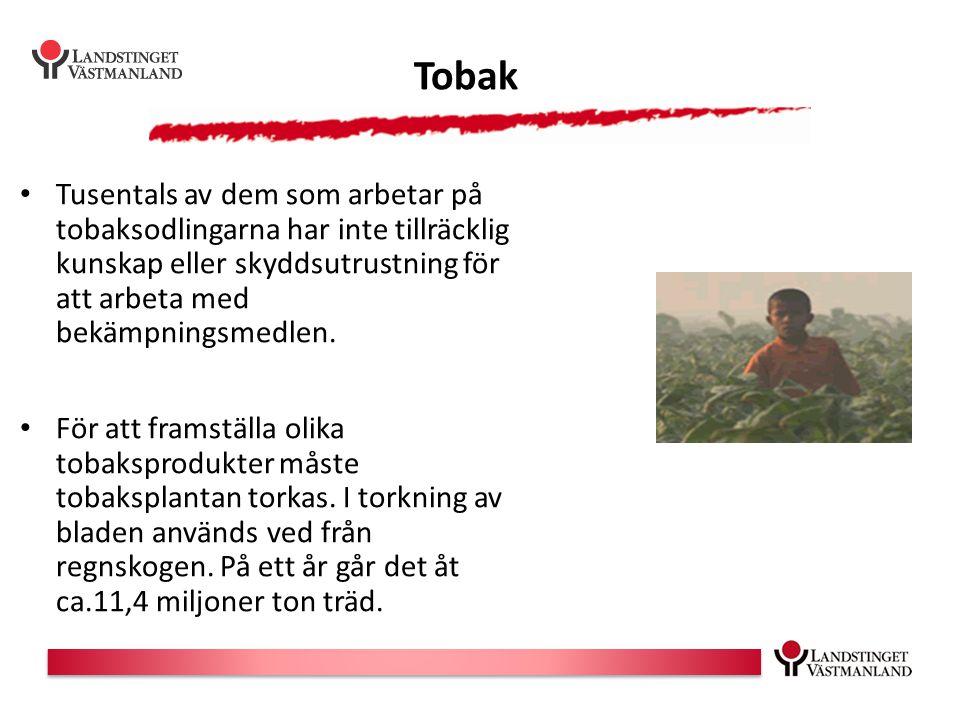 Tobak Tusentals av dem som arbetar på tobaksodlingarna har inte tillräcklig kunskap eller skyddsutrustning för att arbeta med bekämpningsmedlen. För a