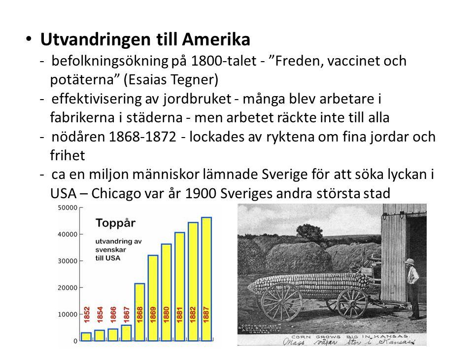Utvandringen till Amerika - befolkningsökning på 1800-talet - Freden, vaccinet och potäterna (Esaias Tegner) - effektivisering av jordbruket - många blev arbetare i fabrikerna i städerna - men arbetet räckte inte till alla - nödåren 1868-1872 - lockades av ryktena om fina jordar och frihet - ca en miljon människor lämnade Sverige för att söka lyckan i USA – Chicago var år 1900 Sveriges andra största stad