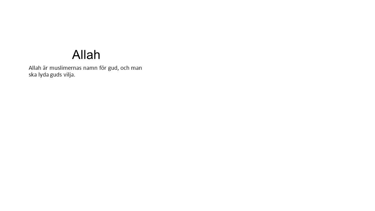 Allah Allah är muslimernas namn för gud, och man ska lyda guds vilja.