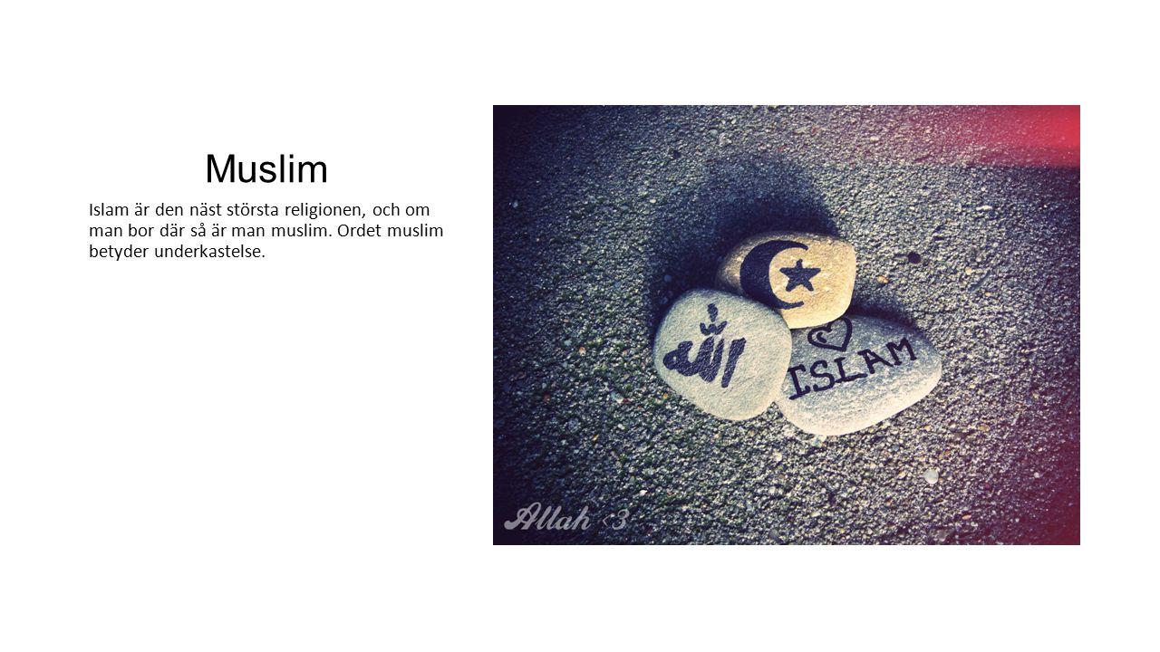 Muslim Islam är den näst största religionen, och om man bor där så är man muslim. Ordet muslim betyder underkastelse.