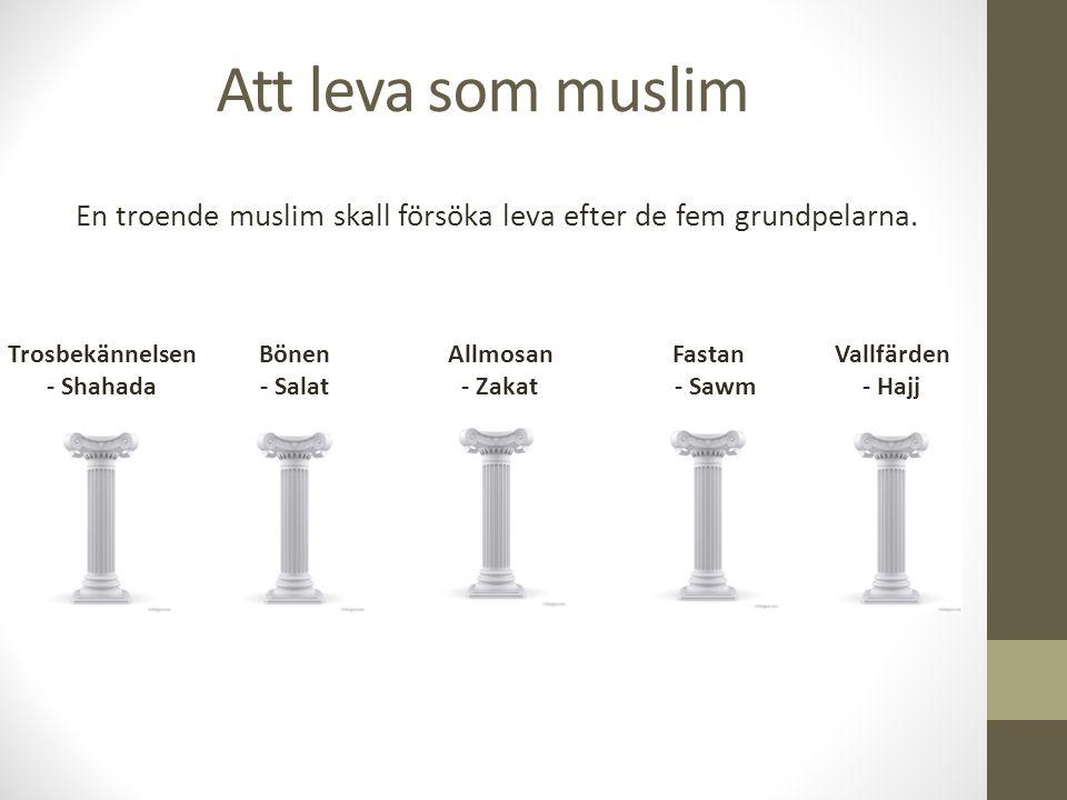 Att leva som muslim En troende muslim skall försöka leva efter de fem grundpelarna. Trosbekännelsen - Shahada Bönen - Salat Allmosan - Zakat Fastan -