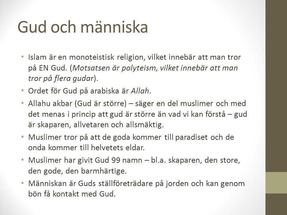 Gud och människa Islam är en monoteistisk religion, vilket innebär att man tror på EN Gud. (Motsatsen är polyteism, vilket innebär att man tror på fle