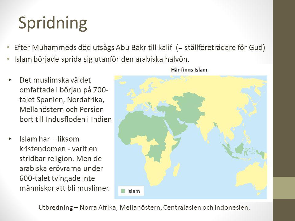 Spridning Efter Muhammeds död utsågs Abu Bakr till kalif (= ställföreträdare för Gud) Islam började sprida sig utanför den arabiska halvön. Det muslim