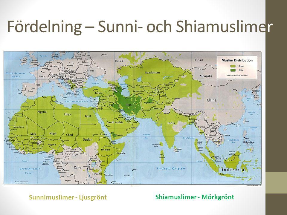 Fördelning – Sunni- och Shiamuslimer Sunnimuslimer - Ljusgrönt Shiamuslimer - Mörkgrönt