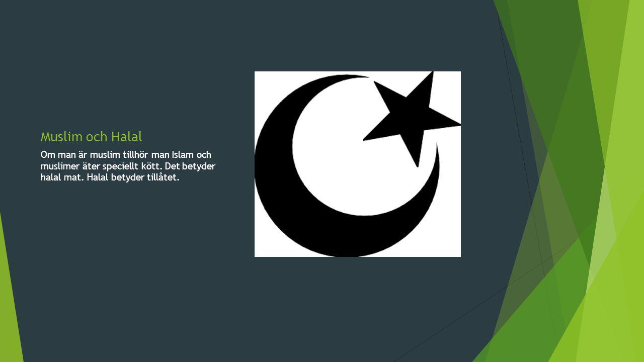 Moské En moské är ett ställe som muslimer går till när man ber