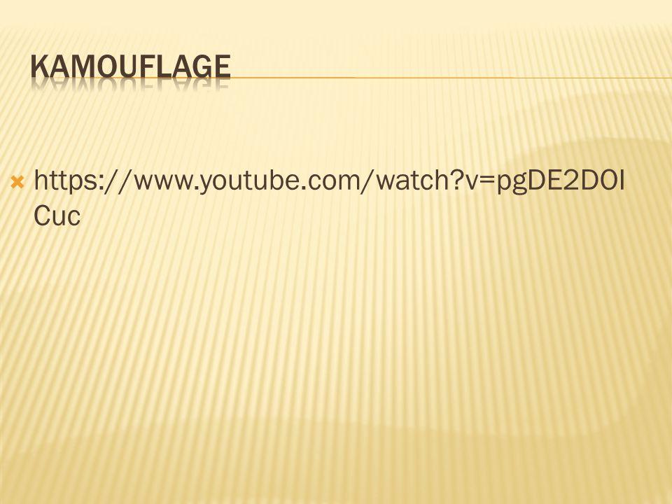  https://www.youtube.com/watch?v=pgDE2DOI Cuc