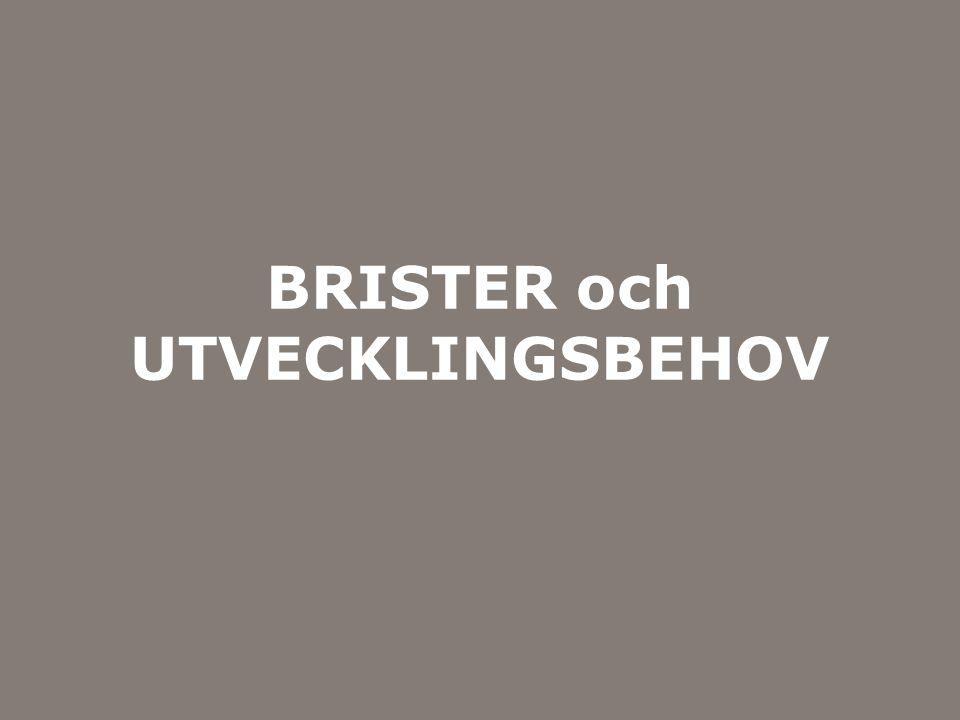 Myndigheten för samhällsskydd och beredskap BRISTER och UTVECKLINGSBEHOV