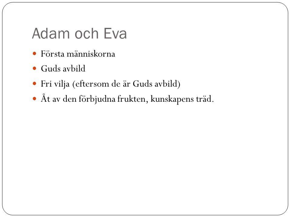 Adam och Eva Första människorna Guds avbild Fri vilja (eftersom de är Guds avbild) Åt av den förbjudna frukten, kunskapens träd.