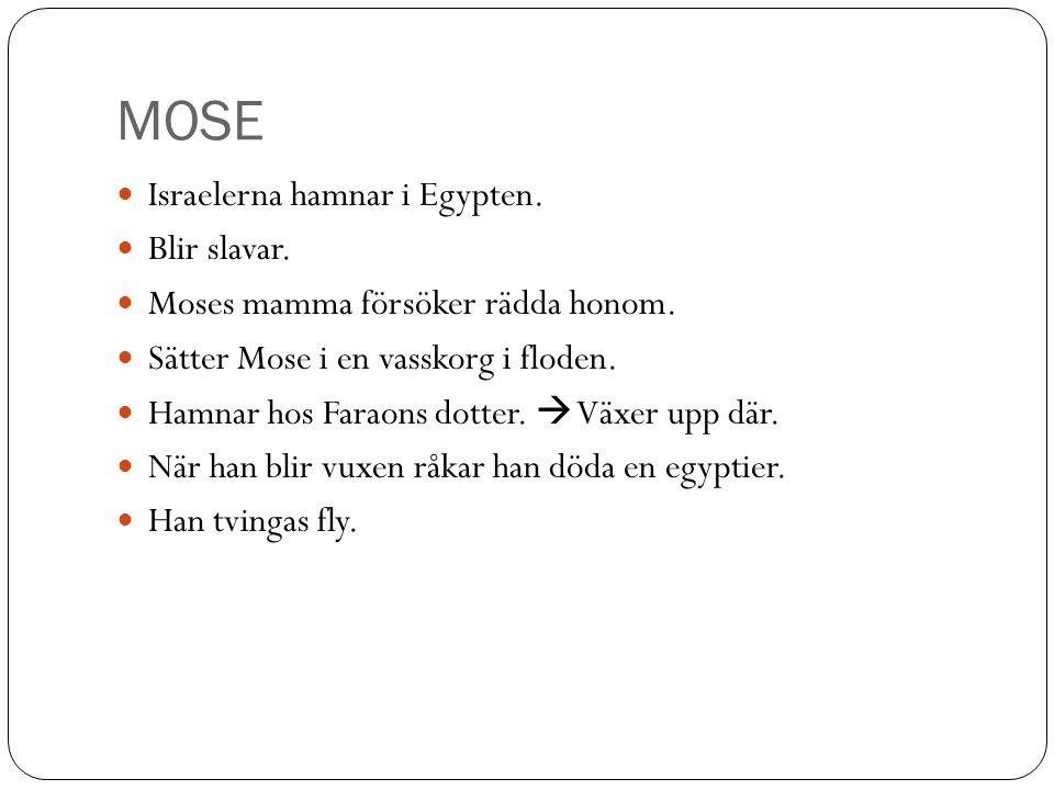 MOSE Israelerna hamnar i Egypten. Blir slavar. Moses mamma försöker rädda honom. Sätter Mose i en vasskorg i floden. Hamnar hos Faraons dotter.  Växe