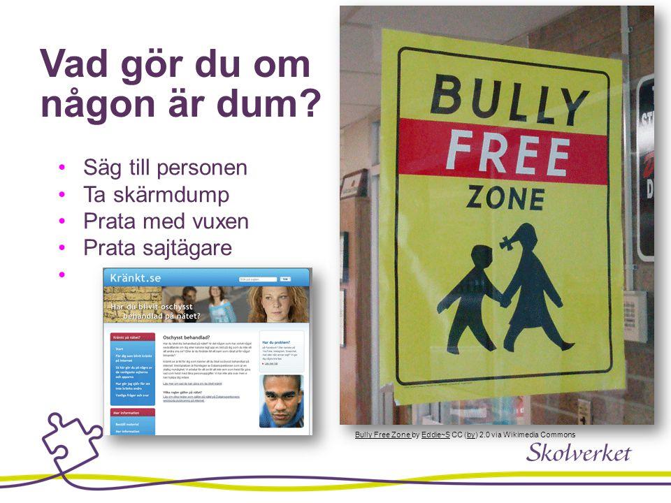 Vad gör du om någon är dum? Internet Access Here Sign, Steve Rhode cc by-nc-sa 2.0 Flickr Säg till personen Ta skärmdump Prata med vuxen Prata sajtäga