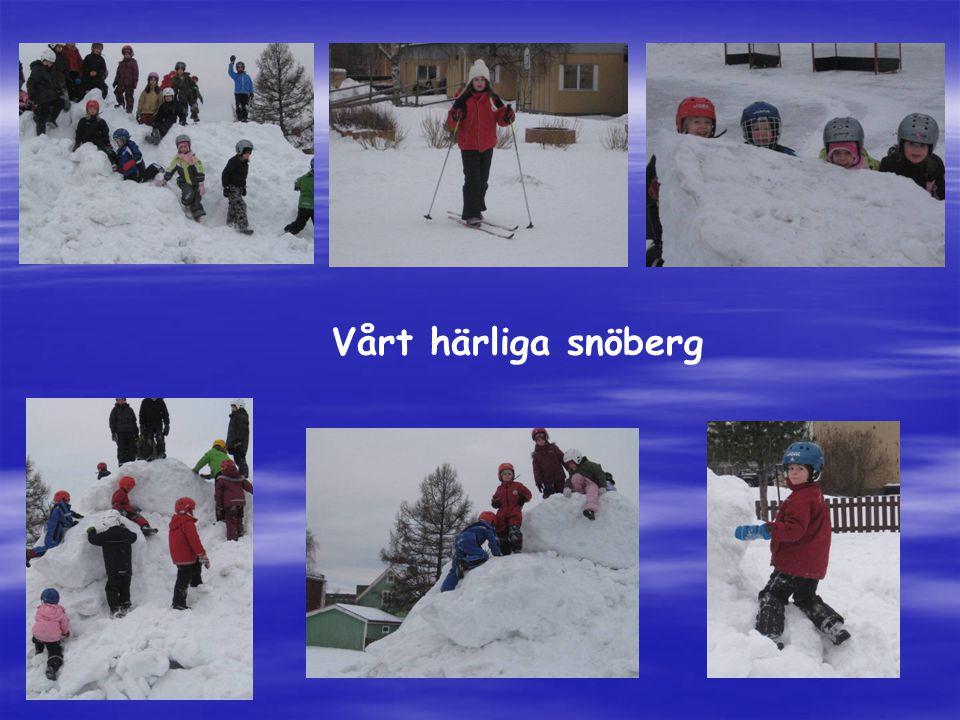 Vårt härliga snöberg