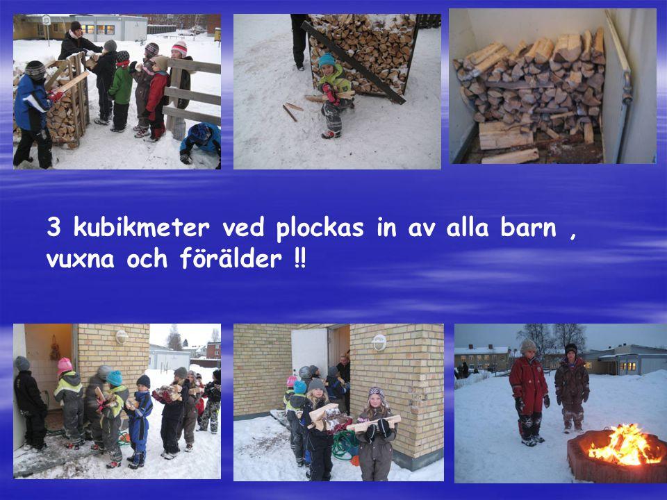 3 kubikmeter ved plockas in av alla barn, vuxna och förälder !!