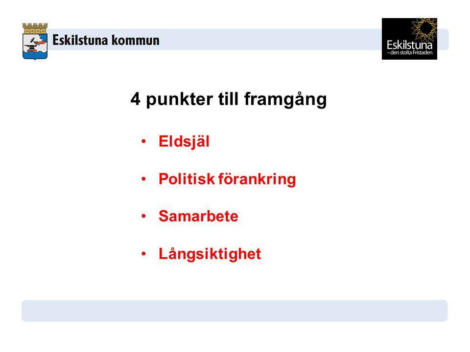 4 punkter till framgång Eldsjäl Politisk förankring Samarbete Långsiktighet