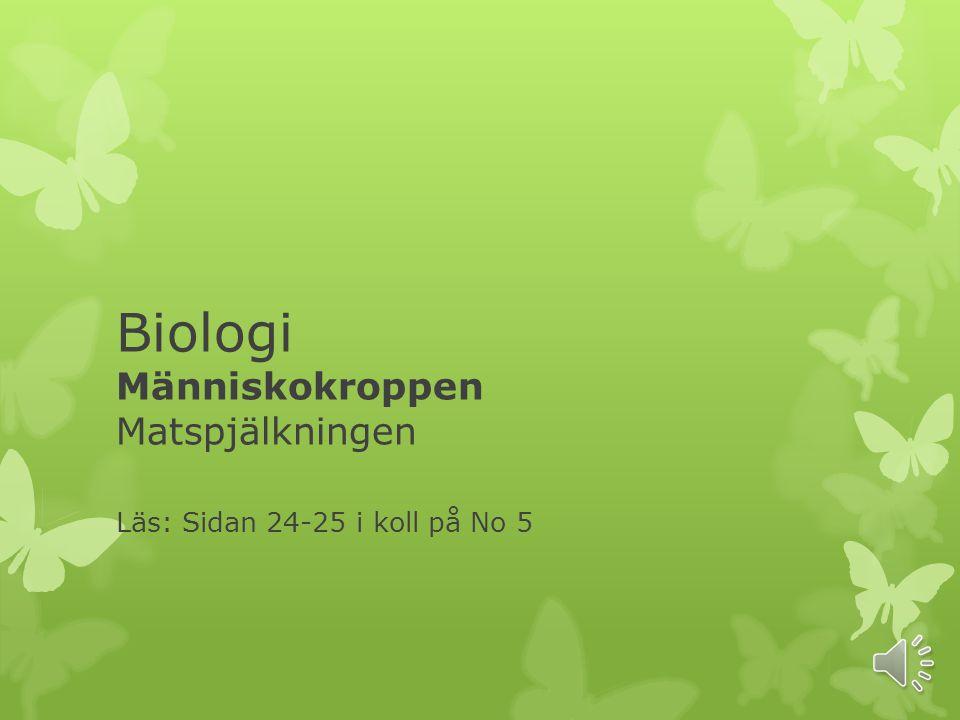 Biologi Människokroppen Matspjälkningen Läs: Sidan 24-25 i koll på No 5