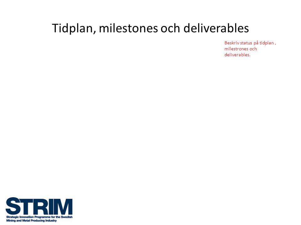 Tidplan, milestones och deliverables Beskriv status på tidplan, milestrones och deliverables.