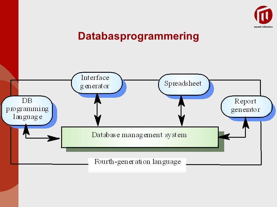 Databasprogrammering