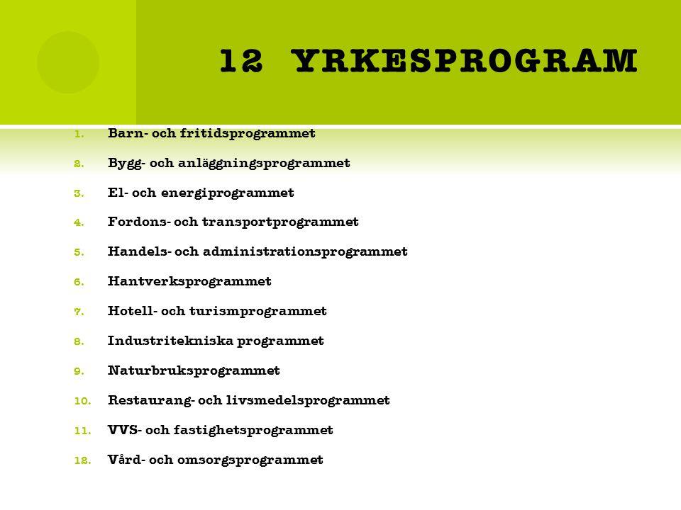 12 YRKESPROGRAM 1.Barn- och fritidsprogrammet 2. Bygg- och anl ä ggningsprogrammet 3.